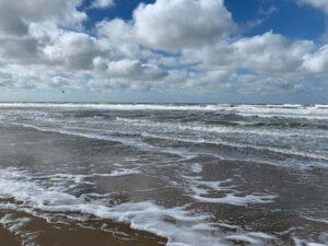 Kracht van de zee - NatuurlijkBegaafd